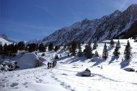 Stations de ski : adoptez le co-voiturage !