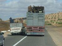 """Maroc : la """"Journée nationale de sécurité routière"""""""