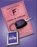 Réforme du permis de conduire : l'éco-conduite confirmée