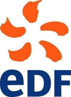 Renault-Nissan et EDF, partenaires : véhicules électriques en France en 2011