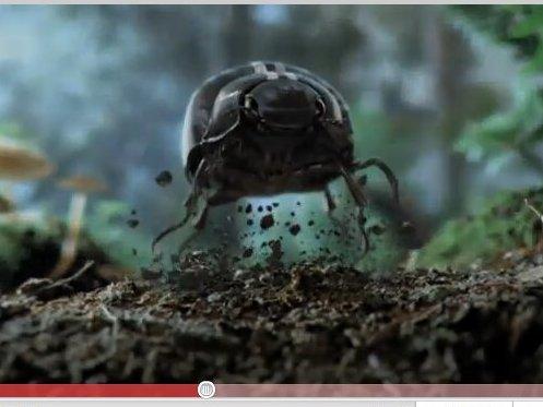 [vidéo] la Nouvelle Nouvelle Beetle arrive le 6 février