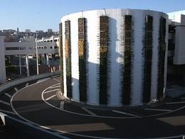 Stationnement : la dépollution par les murs végétaux prouvée scientifiquement à Lyon