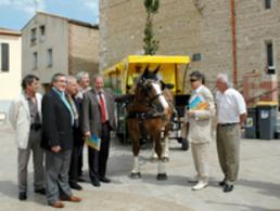 Des chevaux offrent un service non polluant