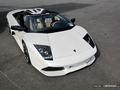 Photos du jour : Lamborghini Murcielago LP640 Roadster (Spa Italia)