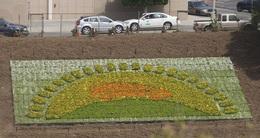 Une campagne publicitaire fleurie pour la Toyota Prius III !