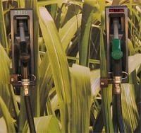 Les bio-carburants déjà contestés