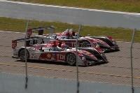 ALMS/Mosport: Audi vainqueur au terme d'une course folle