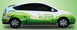 Une Toyota Prius hybride rechargeable fonctionnant aux algues !