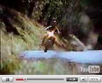 Vidéo moto : Kawasaki, The Ultimate Trip