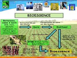 Le bilan écologique et énergétique des biocarburants de 1ère génération est difficile à réaliser