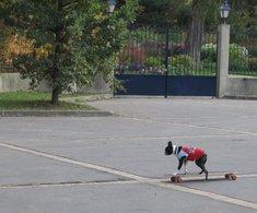 Reportage au Salon Animal Expo : les chiens skateurs et les taxis pour animaux de compagnie