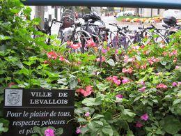 Reportage à Levallois-Perret : les alternatives à la voiture personnelle classique