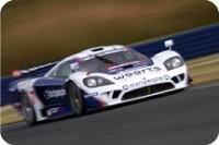 FIA GT: Larbre de retour avec sa Saleen