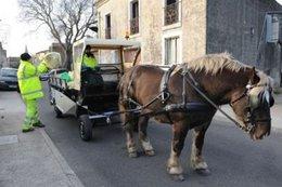 Le cheval, figure de proue de la collecte des déchets ménagers à Vendargues
