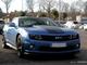 Photos du jour : Chevrolet Camaro Hot Wheels (Cars&Coffee Paris)