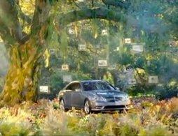 Alerte greenwashing : quand les Mercedes poussent dans les forêts