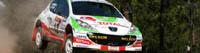 """IRC/Rallye de Turquie: """"Puissance 207"""""""