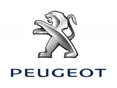 Sécurité : les services Peugeot Connect pour les 207, 308, RCZ et i0n électrique