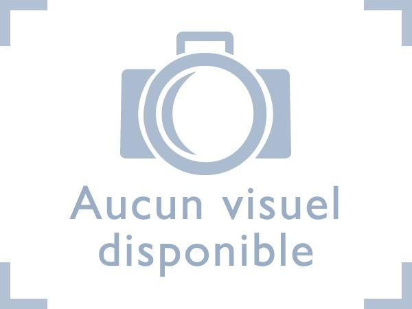 Renault modifie son logo