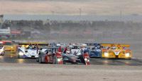 ALMS: Porsche bat de nouveau Audi