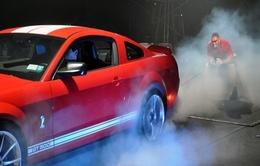 [Vidéo] Un musclé énervé et têtu ne veut pas laisser partir une Shelby GT500