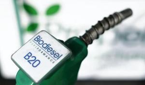 Le biodiesel européen, bourré d'huile de palme, nouveau scandale?