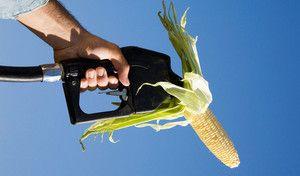 L'Europe s'attaque aux biocarburants