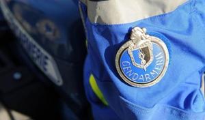 205 gendarmes démantèlent un gang de voleurs de motos