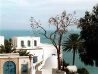 Une usine GAZ en Tunisie ?
