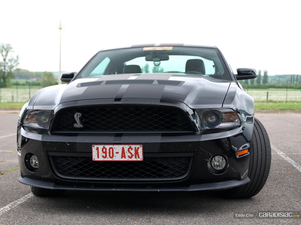Photos du jour : Shelby GT 500 2010 (Classic Days)