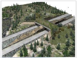 L'Ontario se dote d'un pont pour aider les animaux à traverser l'autoroute