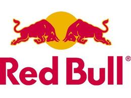 F1 - Red Bull ne craint que Fernando Alonso et Lewis Hamilton pour le titre pilotes