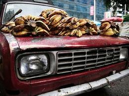 Ces fruits qui donnent la banane aux constructeurs automobiles