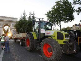 La nature s'invite à Paris: Circulation interdite sur les Champs jusqu'à mardi !