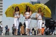 SBK - Qatar : Les filles du paddock sont de retour...