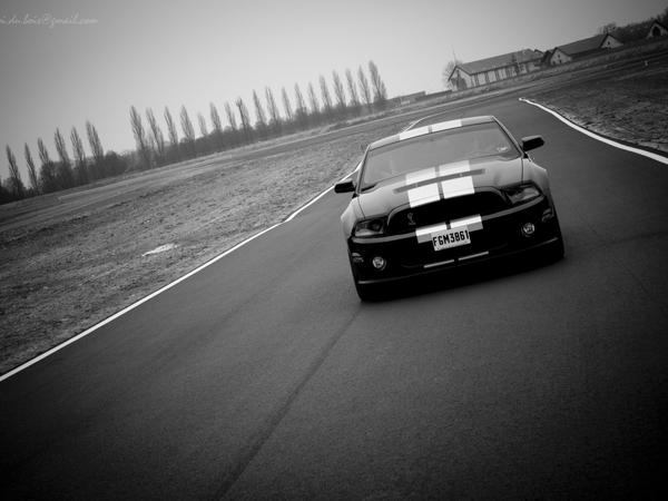 Photos du jour: Shelby Mustang GT500 2010