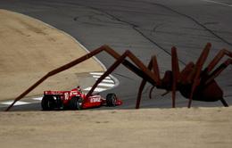 Insolite : araignée sur le circuit, gros ennui