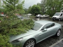 Une Aston Martin Rapide dans un arbre, mais ce n'est pas la faute du conducteur