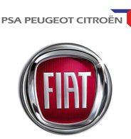 Crise : PSA et Fiat vont-ils s'allier ?