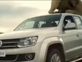 [Vidéo] Un éléphant dans une benne de Volkswagen Amarok