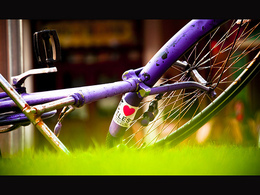 Quelle est l'empreinte carbone d'un cycliste ? Tout dépend de son alimentation...