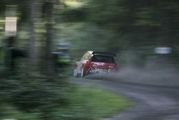 WRC Irlande : les engagés : la portion congrue