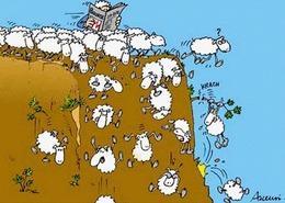 Le mouton noir, vraiment : un automobiliste blessé par un agneau tombé du ciel