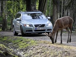 Volvo : trois nouveaux systèmes de sécurité dévoilés