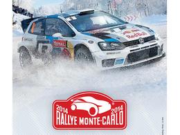 WRC 2014 : le Conseil Mondial du Sport Auto modifie les règles