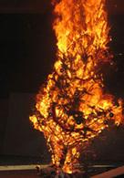 Enervé par son PV, il brûle le sapin de noël municipal
