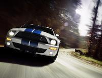 La Shelby GT500 en détails