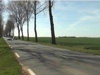 Sécurité routière : Abattre les arbres le long des routes ? [+vidéo]