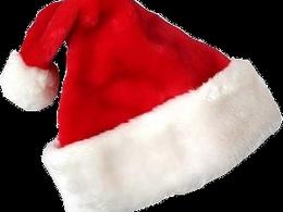 Insolite: faux bonnets rouges mais vrais bonnets d'âne
