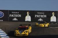 ALMS: Garcia et Fassler rejoignent Corvette.